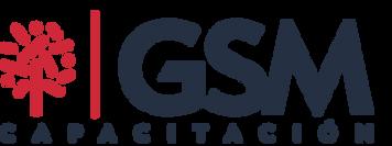 GSM (4).png