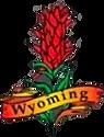 Wyoming Indian Paintbrush.png