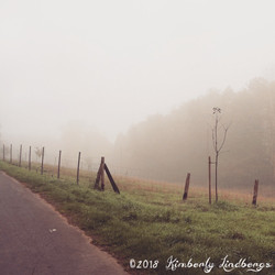 Sonoma Roadway