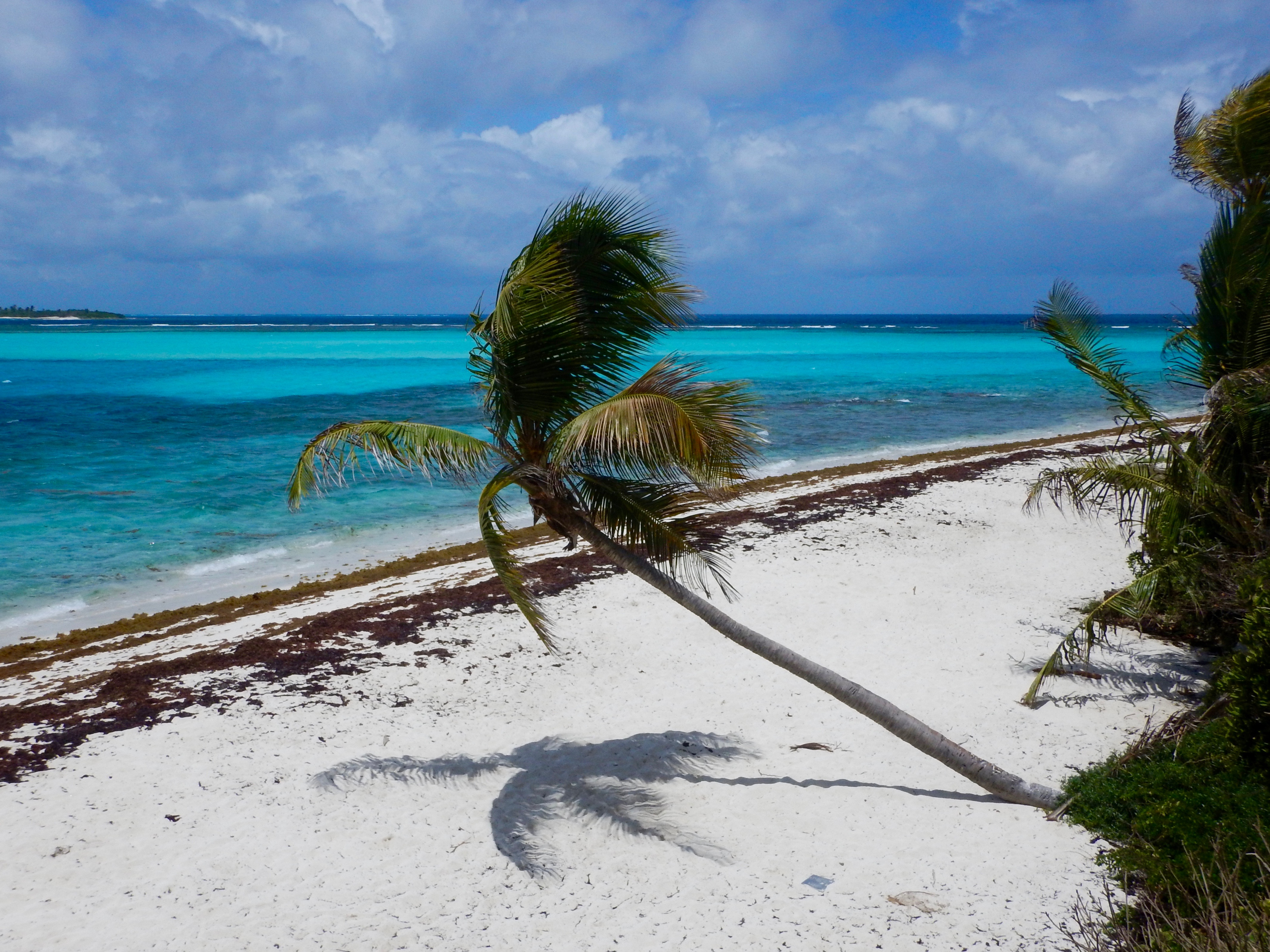 Tobago Cays