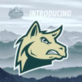 Llamas Logo for Website.JPG