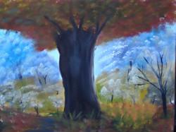 Old Oak Tree LS 1002 16 x 20