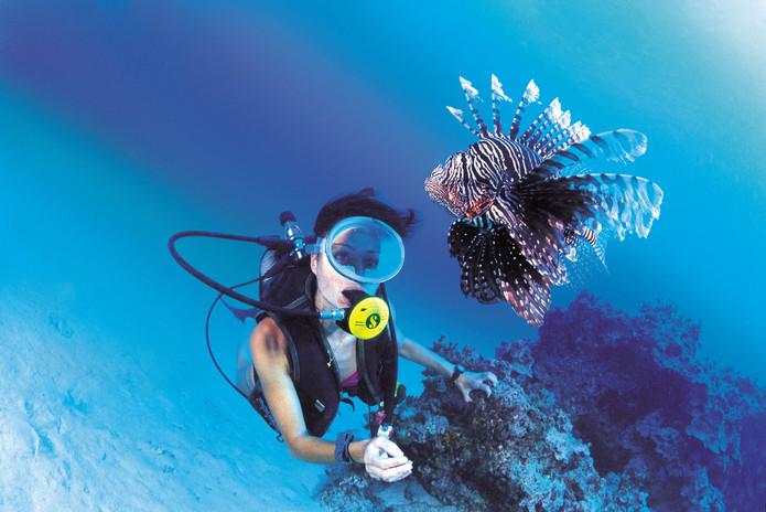 diving-wallpaper-14.jpg