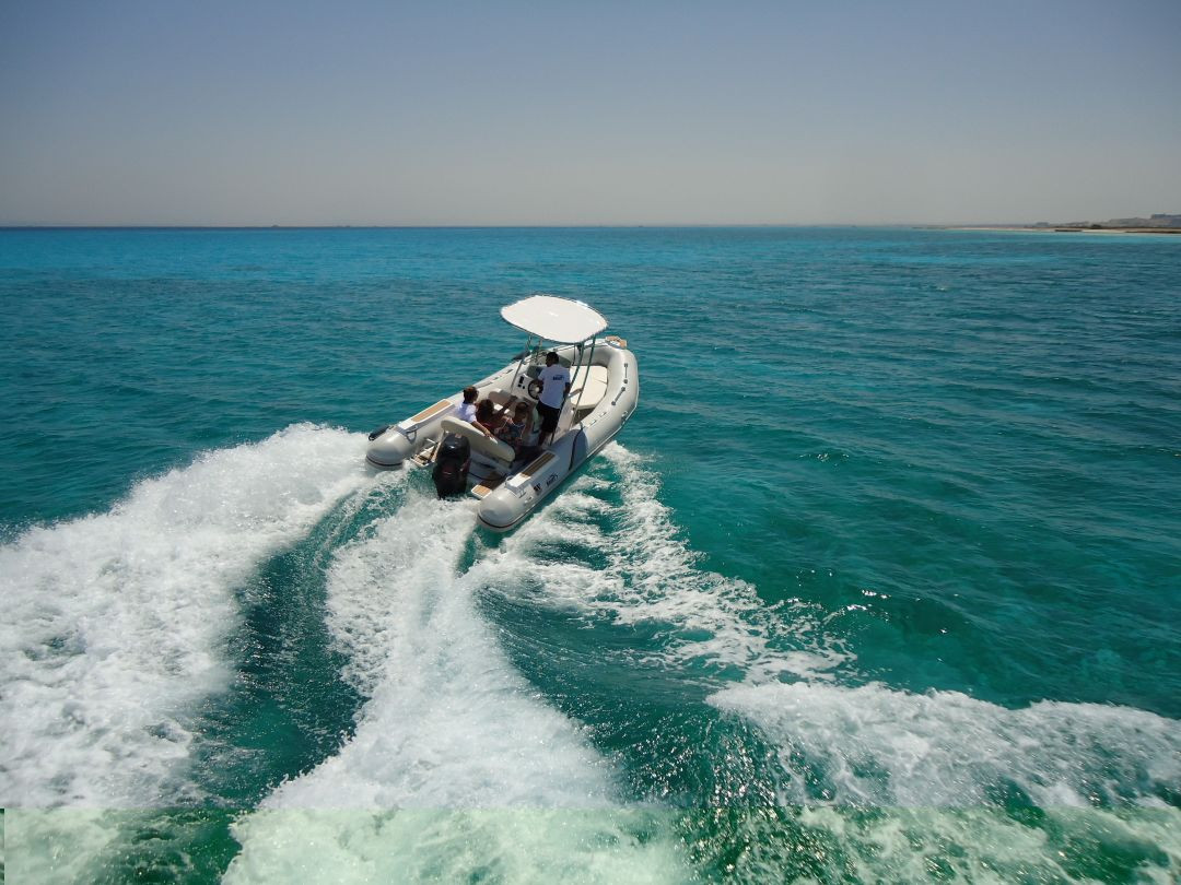 dolphins house snorkeling and swiming hurghada red sea tris