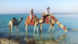 Marsa-Allam-Marsa-Alam-Location-Trips-In