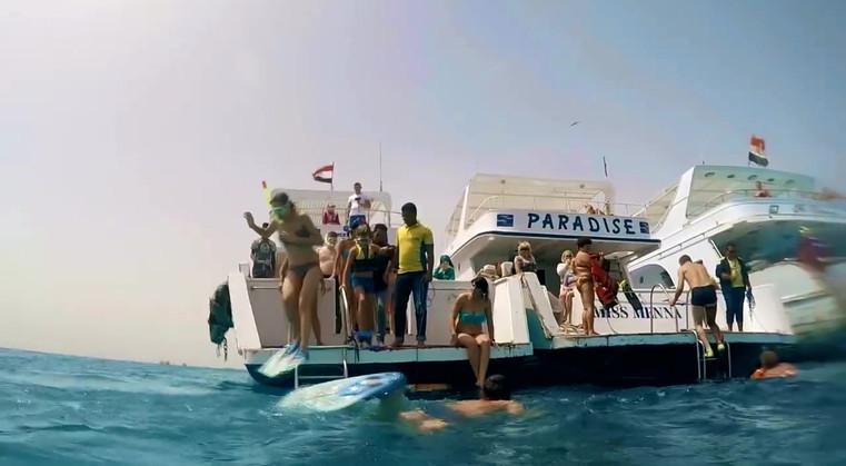 paradise isalnd.mp4