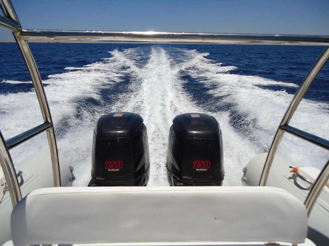 speed boat hurghda online tours
