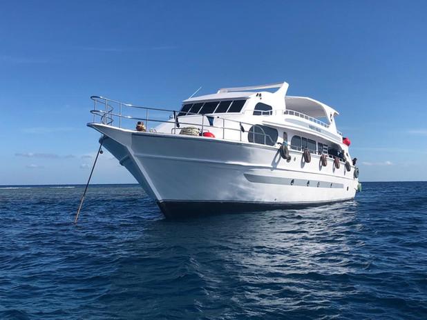 diving boat hurghada .jpeg
