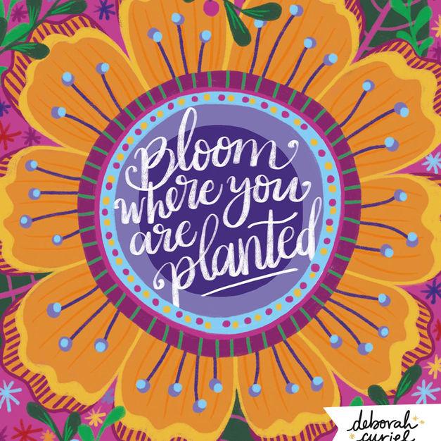 Bloom_quote_lettering_illustration_debcu