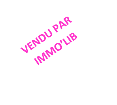 VENDU PAR IMMO'LIB.png