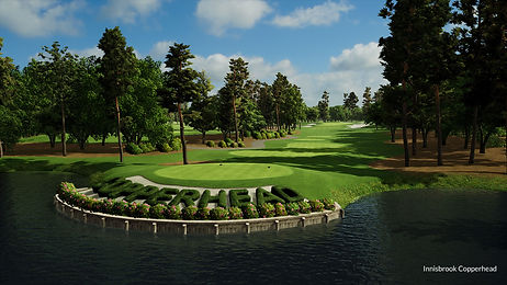 Innisbrook copperhead, golf course, putting green, tee box, golf ball,