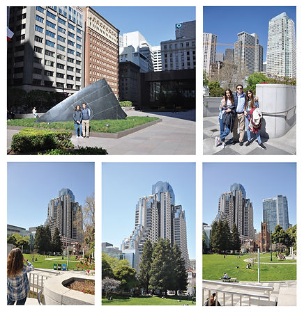 SF_park.jpg