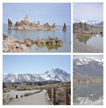 landscape_duck.jpg