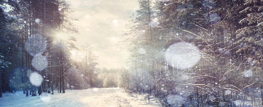 winter-soft-pic.jpg