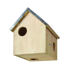 Squirrel housing/Re-housing tips.
