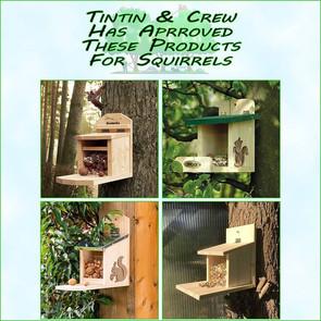 Squirrel Feeder Guide!