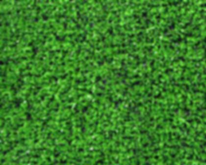 דשא סינטטי דגם גוניור