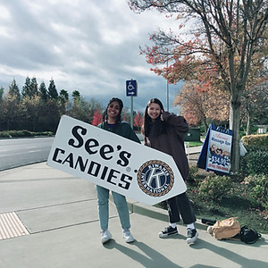 See's Candies Sign Waving #2