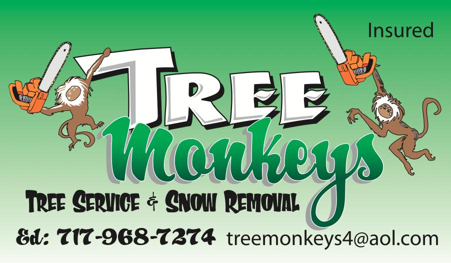 tree monkeys b.c.