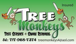tree monkeys b.c.