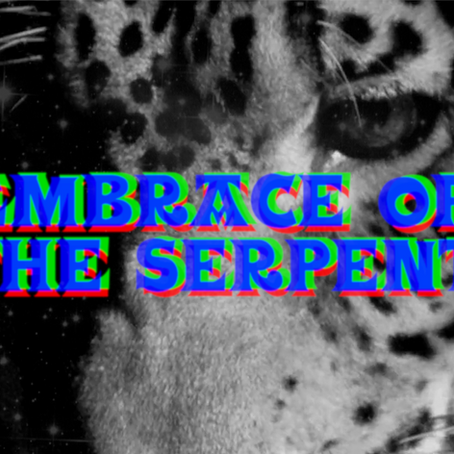 The Big Ship Recommends: EMBRACE OF THE SERPENT