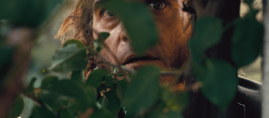 Film and Fog: An Homage to INHERENT VICE