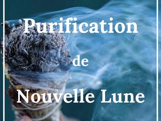 💨 Purification d'un espace par la fumigation 💨