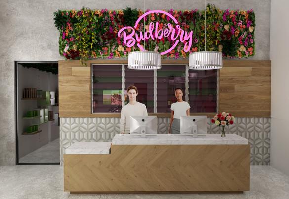 Budberry_FastCheckout.jpg
