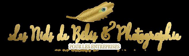 Les_Nids_de_Bébés_ENTREPRISE.png