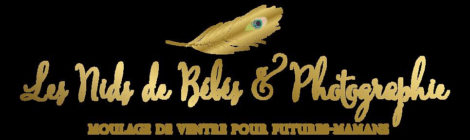 Les_Nids_de_Bébés_copy.png