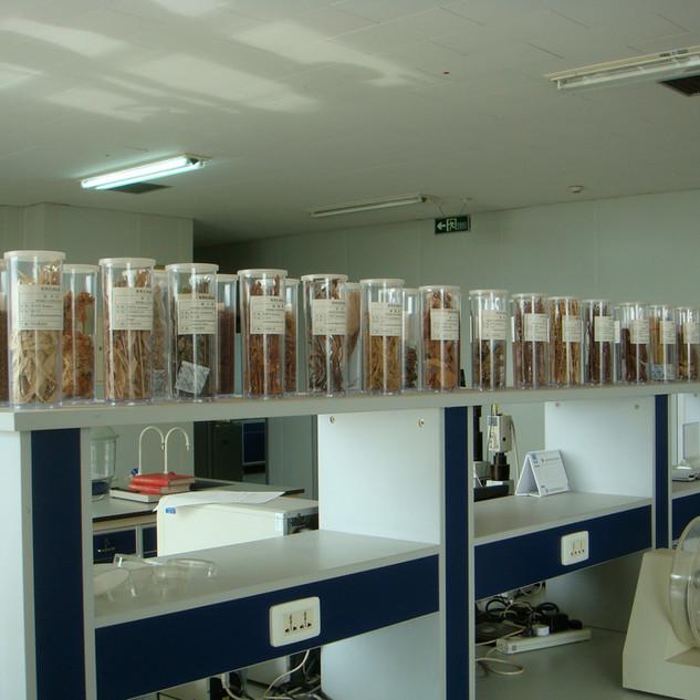 tong-ren-tang-herbs-in-the-lab.jpg