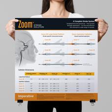 Ischemic Stroke Catheter Solution Poster