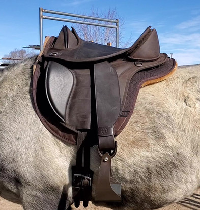 EDIX Treeless Saddle