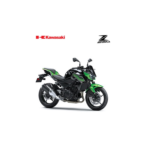 Kawasaki Z250 ABS