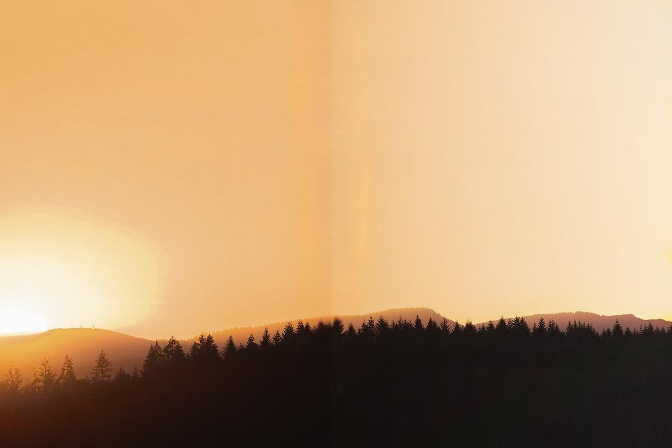orange background.png