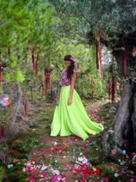 Ibiza Fairy Tale