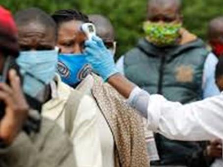 La OMS respalda la investigación de remedios naturales contra el coronavirus en África