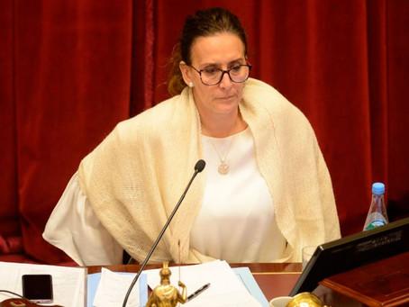 DENUNCIAN A MICHETTI EN EL SENADO POR DEFRAUDACIÓN CONTRA LA ADMINISTRACIÓN PÚBLICA