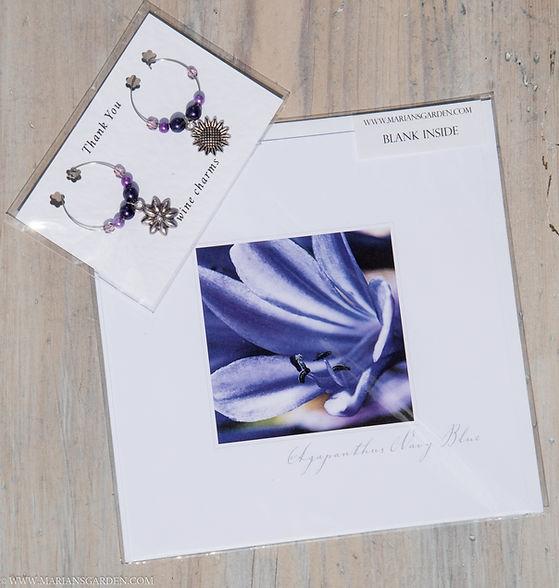 purple flowers and agapanthus pack.jpg