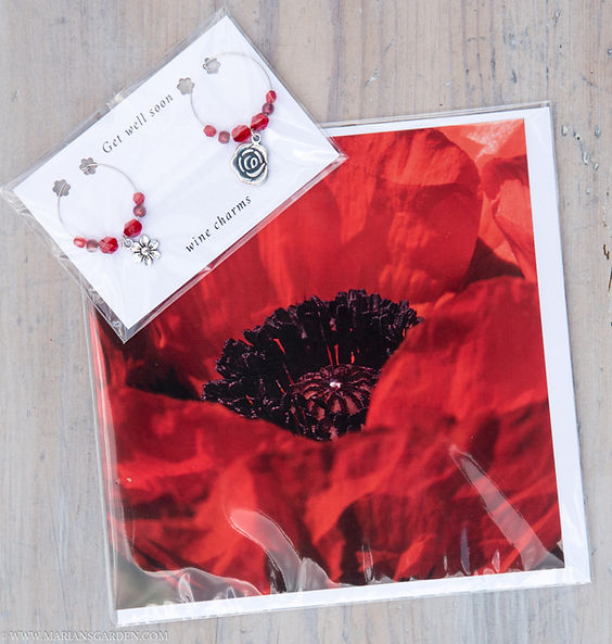 red flowers and poppy full pack.jpg