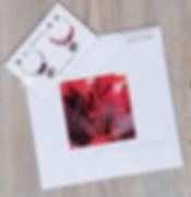 lilies and tango starburst pack.jpg