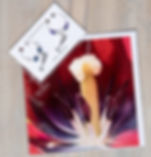 champagne and tulip pack.jpg