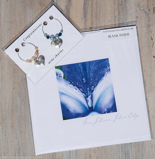 bridal iris pack.jpg