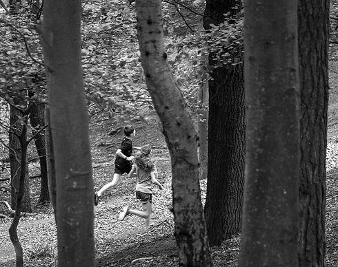 Woodland-Trail-ntl_edited.jpg