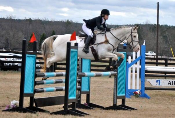 Judge My Equitation