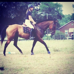 This pair is going places #dressage #eventing #eventinglife #hardworkpaysoff #workhardplayhard #heel