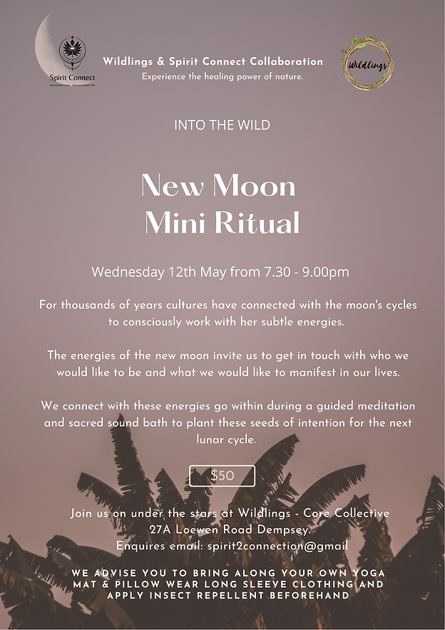 New Moon poster May 12th Into the Wild.p
