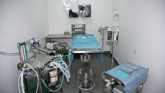 Surgical Suite Animal Hospital Nanaimo