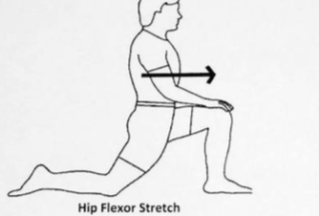 Do You Suffer Hip Pain Whilst Training?