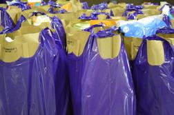 Margie's House Purple Bags